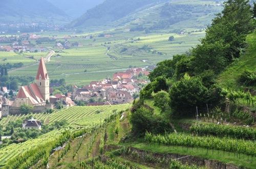 5-Diethylene-Glyco- Wine-Poisoning–Austria-1985